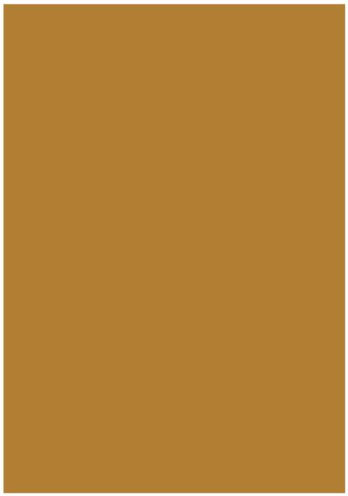 Kosak