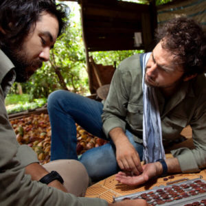 Marou Chocolatier - partenaires selectionnent feves de cacao
